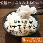 新米 福井県産米 【ハナエチゼン】 5kg 白米 玄米 29年産 選べる種類・数量 コシヒカリの孫 華越前 花えちぜん お米 送料無料