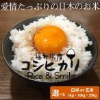 福井県産米 「コシヒカリ」 5kg 白米 玄米 29年産 選べる種類・数量 お米 送料無料