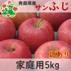 りんご 訳あり 5kg 青森県産 サンふじ 家庭用 キズあり 5kg