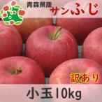 りんご 訳あり 1 0kg 青森県産 サンふじ 小玉 キズあり 10kg