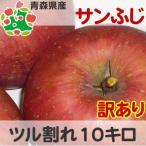 りんご 訳あり 青森県産 サンふじ ツル割れ 10kg
