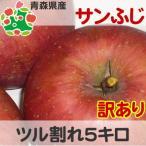 りんご 訳あり 青森県産 サンふじ ツル割れ 5kg