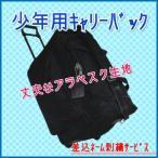 少年用剣道防具キャリーバック 「アラベスクキャリーバック」(差込ネーム刺繍サービス)