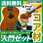 ウクレレ 初心者 入門 セット AlaMoana UK-2500G (送