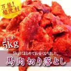 马肉 - 馬肉 パーティ 焼肉 BBQ 馬肉切り落とし 5kg