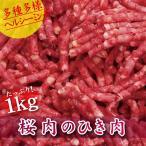 馬肉 ホルモン パーティ 焼肉 BBQ ポイント消化 桜肉のひき肉 1kg