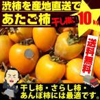 あたご柿 約10kg 枝付渋柿 干し柿 つるし柿 あんぽ柿 さらし柿用 11月上旬頃より発送予定