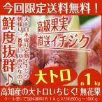 完熟イチジク約1kg入 高知産の大トロいちじく無花果 北海道、沖縄県とその他の離島は発送不可