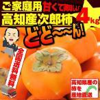 次郎柿 約4kg 甘柿 ご家庭用 高知県産 送料無料 土佐の甘かき 10月末頃より発送予定