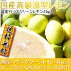 高級温室レモン 国産ハウスグリーンレモン4kg入 皮ごと使える高知れもん