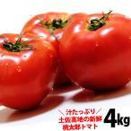 トマト 送料無料 約4kg 桃太郎 トマト 高知産 とまと  沖縄県と北海道と離島は配送不可