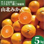 山北みかん 5kg高知のミカン ご家庭用蜜柑 沖縄県と離島は1000円の送料