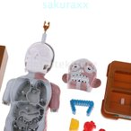 F Fityle 人体解剖学 プラスチック製 身体部分と器官 人体解剖模型 いたずら玩具