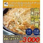 岡山県産小麦粉使用!手づくりの美味しいチヂミ〜連島ごぼうチヂミ 5枚セット