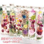 Yahoo!南青山Flower&Aroma★全国送料無料★お任せハーバリウムシリーズ-Largeラージサイズ-