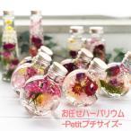Yahoo!南青山Flower&Aroma★全国送料無料★お任せハーバリウムシリーズ-petitプチサイズ-