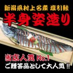 新潟村上名産 塩引き鮭 半身姿造り 特大 (塩引鮭 お祝い事 贈答品) 送料無料