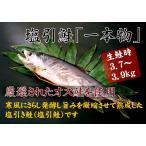 大人気商品 今シーズン残りわずか 新潟県村上名産 塩引き鮭(約3.7〜3.9kg)一本物 まるごと