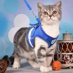 猫用ハーネス 猫リード 猫用ハーネス&リードセット