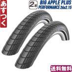 SCHWALBE シュワルベ BIG APPLE PLUS ビッグアップルプラス タイヤ 2本セット 26x2.15 2本セット 自転車 MTB あすつく 返品保証