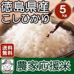 四国徳島のお米 徳島県産こしひかり 5kg 「農家応援米」【送料無料】※北海道、沖縄及び離島は別途発送料金が発生します