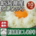 【送料無料】 新潟産コシヒカリ(29年度産)白米10kg(5kg×2袋)※北海道、沖縄及び離島は別途発送金が発生します