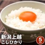 【送料無料】【平成28年】新潟上越コシヒカリ 5kg 単一原料米※北海道、沖縄及び離島は別途発送料金が発生します
