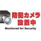 ニチレイ マグネット標識 150×300 防犯カメラ設置中
