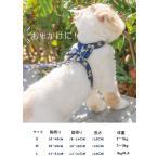 猫用  犬用 ペット用 ハーネス 猫胴輪 リードセット 犬胴輪 犬リードセット サイズ調節可能 花柄 おしゃれ 通気いい ネコベスト ソフト胸あて  散歩 脱走防止