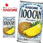 100CAN パインアップル 160g×30本 缶