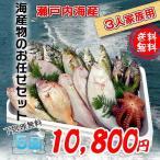 瀬戸内海産 海産物の詰め合わせ3人前5品セット 魚介類