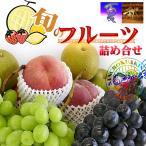 マスクメロン入り四季のフルーツの詰め合わせB/お中元/お歳暮/果物ギフト【送料無料】
