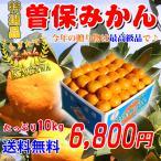 曽保みかん10kg 香川県産のお歳暮用のギフトみかんを送料無料で。