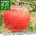 長野県より産地直送 JAながの飯綱地区 サンふじ 最高等級:グルメ 5キロ (16玉から18玉) 送料無料 林檎 りんご リンゴ