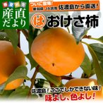 送料無料 新潟県より産地直送 JA羽茂 おけさ柿 3.75キロ L又はMサイズ (18玉から20玉)