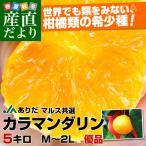 送料無料 JAありだ マルス共選 カラマンダリン Mから2Lサイズ 優品 5キロ  柑橘 かんきつ オレンジ みかん