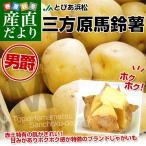 送料無料 静岡県 JAとぴあ浜松 三方原馬鈴薯(男爵) Mサイズ 10キロ