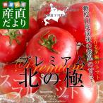 北海道より産地直送 下川町のスーパーフルーツトマト プレミアム 北の極 <特秀> 800g化粧箱(8から15玉入)