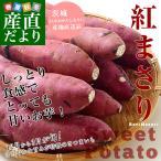 送料無料 茨城県JAなめがた さつまいも「紅まさり」 Mサイズ 約5キロ(18本前後) さつま芋 サツマイモ 薩摩芋