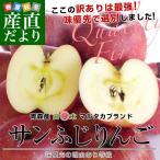 送料無料 青森県より産地直送 高木商店 マルタカブランド サンふじりんご 味優先の理由あり 3キロ(10から12玉入) 林檎 りんご リンゴ