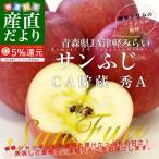 青森県より産地直送 JA津軽みらい サンふじ CA貯蔵 秀A 5キロ (16玉から18玉前後) 送料無料 林檎 りんご