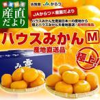 橘子 - 佐賀県より産地直送 JAからつ ハウスみかん Mサイズ 約2キロ(20玉前後) みかん ミカン 蜜柑