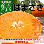 送料無料 佐賀県より産地直送 JAからつ はまさき 秀品 2.5キロ 化粧箱入(12から15玉)柑橘 かんきつ