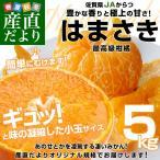 送料無料 佐賀県より産地直送 JAからつ はまさき 小玉SSサイズ 5キロ (60玉前後)  柑橘 かんきつ