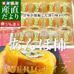 和歌山県から産地直送 JA紀北かわかみ あんぽ柿 大玉サイズ 70g×12袋 送料無料 干し柿 ホシガキ アンポ