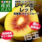 Kiwi - 送料無料 福岡県より産地直送 JAふくおか八女 レインボーレッドキウイ 約1.35キロ(15玉)