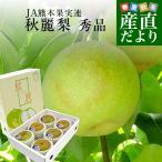 送料無料 熊本県より産地直送 JA熊本果実連 秋麗(しゅうれい)梨 秀品 2キロ 大玉(5玉から6玉) ナシ なし