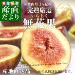和歌山県より産地直送 JA紀の里 完熟いちじく(無花果) SからLサイズ 約300g(4から6玉)×4パック 合計1.2キロ:クール便