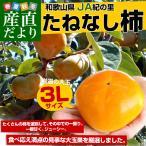 Persimmon - 送料無料 和歌山県より産地直送 JA紀の里 たねなし柿 大玉3Lサイズ 約3.75キロ(14玉)