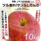 送料無料 JAつがる弘前 ツル割れ・サンふじりんご10キロ(26玉から46玉)林檎 りんご リンゴ